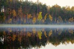 Rijke waaier van kleuren van de herfstbos op kust van stil mistig meer royalty-vrije stock foto