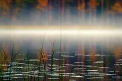 Rijke waaier van kleuren van de herfstbos op kust van stil mistig meer royalty-vrije stock foto's