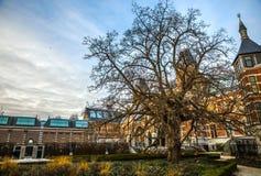 Rijksmuseum - muzeum narodowe dedykujący sztuki i historia Jeden popularny muzeum w Europa Zdjęcia Royalty Free