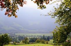 Rijn-Vallei (het Kanton van Graubà ¼ nden, Zwitserland), door Gebladerte wordt ontworpen dat Stock Foto's