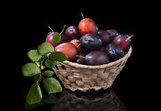 Rijp die pruimfruit op zwarte achtergrond met bezinning wordt geïsoleerd stock afbeelding