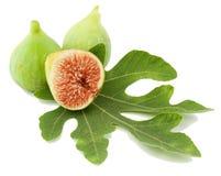 Rijp groen fig.vruchten en blad Royalty-vrije Stock Afbeelding