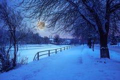 Rijp op een de winternacht Royalty-vrije Stock Afbeelding