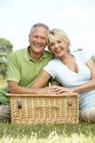 Rijp paar dat picknick in platteland heeft royalty-vrije stock afbeeldingen