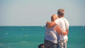 Rijp Paar -- omhels het overzien van overzees Mooi paar van oudsten dichtbij water Oude gelukkige mensen die handen houden stock video
