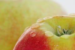 Rijp rood - gele appel op een witte achtergrond met dalingen van water na regen stock afbeelding