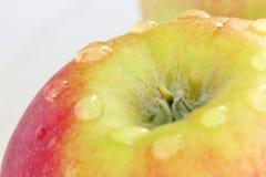Rijp rood - gele appel op een witte achtergrond met dalingen van water na regen royalty-vrije stock afbeeldingen