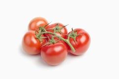Rijp van tomaten Royalty-vrije Stock Foto's