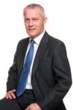 Rijp zakenmanportret stock foto's