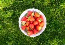 Rijpe aardbeien Stock Afbeelding
