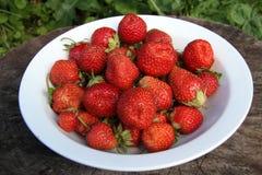 Rijpe aardbeien op een witte plaat Stock Afbeelding