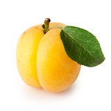 Rijpe abrikoos met groen blad Stock Afbeelding
