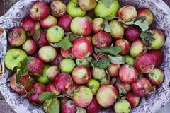 Rijpe appel in de mand, decor royalty-vrije stock foto