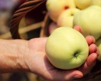 Rijpe appel in een vrouwelijke hand Stock Foto's