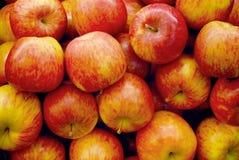 Rijpe appelen Royalty-vrije Stock Foto's
