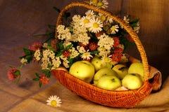 Rijpe appelen en bloemen in de mand Royalty-vrije Stock Foto's