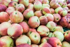 Rijpe appelen op de markt Stock Foto