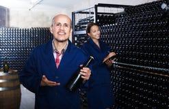 Rijpe arbeider in wijnmakerij Stock Afbeeldingen