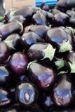 Rijpe auberginevruchten Royalty-vrije Stock Afbeelding