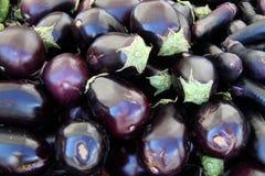 Rijpe auberginevruchten Stock Afbeeldingen