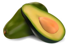 Rijpe avocado royalty-vrije illustratie