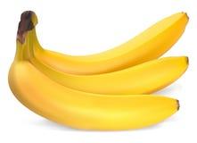 Rijpe bananen stock illustratie