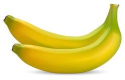 Rijpe bananen vector illustratie