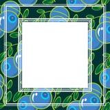 Rijpe blauwe bes met bladeren Stock Afbeeldingen