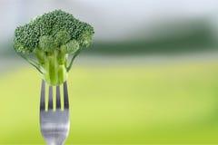 Rijpe broccoli op vork over achtergrond stock afbeelding