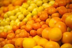 Rijpe citrusvruchten Stock Afbeeldingen