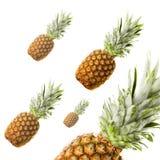 Rijpe die ananassen op wit worden geïsoleerd Stock Afbeeldingen
