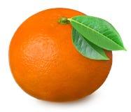 Rijpe die mandarin op witte achtergrond wordt geïsoleerd Stock Foto's