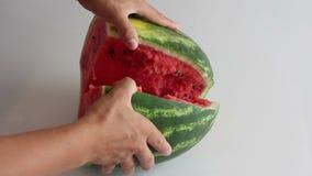 Rijpe die watermeloen met een mes wordt gesneden stock video