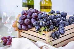 Rijpe druiven stock fotografie