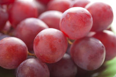 Rijpe druiven Royalty-vrije Stock Foto's