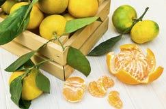 Rijpe en sappige mandarijnmandarin en groene bladeren in het krat stock fotografie