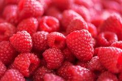 Rijpe frambozenmacro Selectieve nadruk Fruitachtergrond met exemplaarruimte De zomer en van de bessenoogst concept vegan Royalty-vrije Stock Afbeelding
