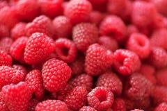 Rijpe frambozenmacro Selectieve nadruk Fruitachtergrond met exemplaarruimte De zomer en van de bessenoogst concept vegan Stock Foto