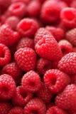 Rijpe frambozenmacro Selectieve nadruk Fruitachtergrond met exemplaarruimte De zomer en van de bessenoogst concept vegan Stock Afbeelding