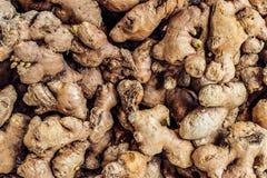 Rijpe gemberwortels in een hoop stock foto