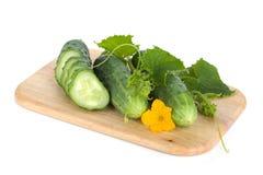 Rijpe gesneden komkommer op scherpe raad Stock Fotografie