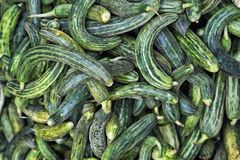 Rijpe groene komkommers Stock Foto