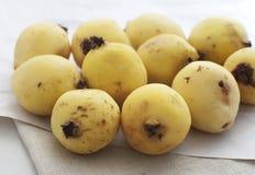 Rijpe guave Stock Foto