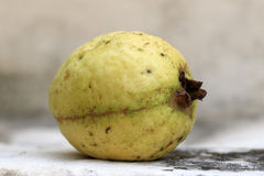 Rijpe guave Royalty-vrije Stock Fotografie