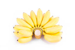 Rijpe hand van gouden bananen of DameFinger banaan op wit geïsoleerd fruitvoedsel het achtergrond gezond van Pisang Mas Banana Stock Fotografie