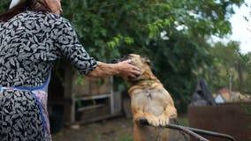 Rijpe huisvrouw die haar huisdierenhond petting Hond op een ketting in een landelijke yard dichtbij de cabine stock video