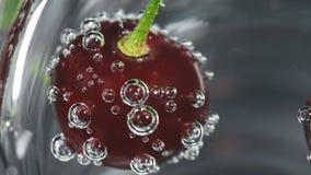 Rijpe kers in glas met bellen van sodawater stock videobeelden
