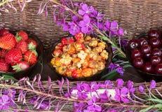 rijpe kersen, bergbraambessen, aardbeien Royalty-vrije Stock Foto