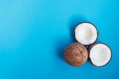 Rijpe kokosnoten en halve kokosnoot op blauwe achtergrond Royalty-vrije Stock Foto's