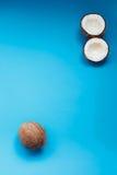 Rijpe kokosnoten en halve kokosnoot op blauwe achtergrond Royalty-vrije Stock Fotografie